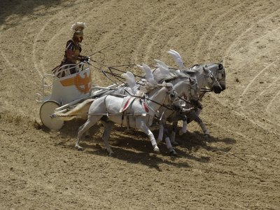 horses-1976554.jpg