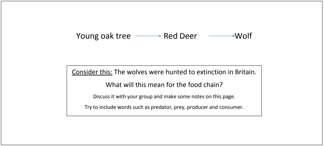 science-food-chain.png