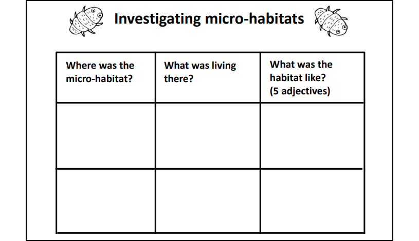 science-micro-habitats.png