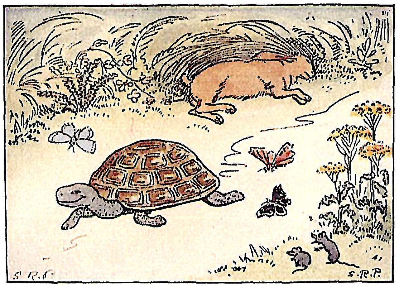 tortoise-hare-fable.png
